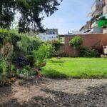 Gartenteil mit Rasen und Kies